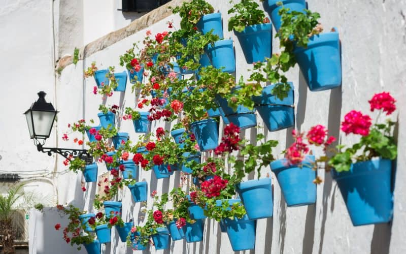 Costa del Sol Places to See | Street in Marbella Old Town