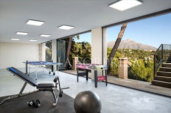 Private gym with treadmill and yoga view